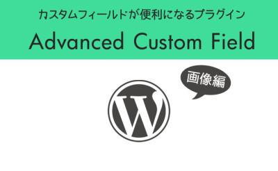 Advanced Custom Fieldの使い方画像編